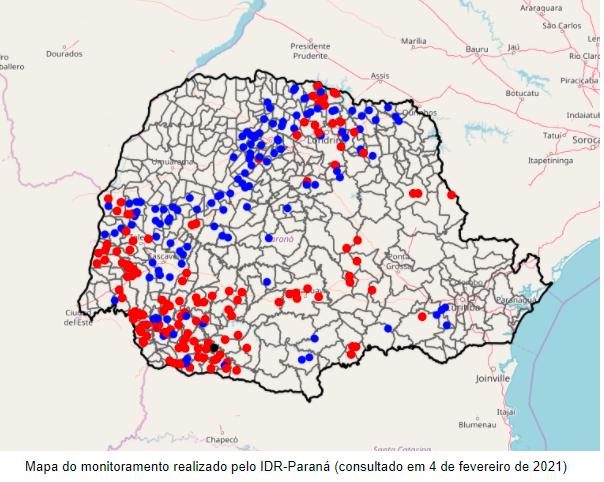 Mapa do monitoramento realizado pelo IDR-Paraná (consultado em 4 de fevereiro de 2021)